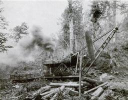 Little-river-lumber-company-skidder-tn1.jpg