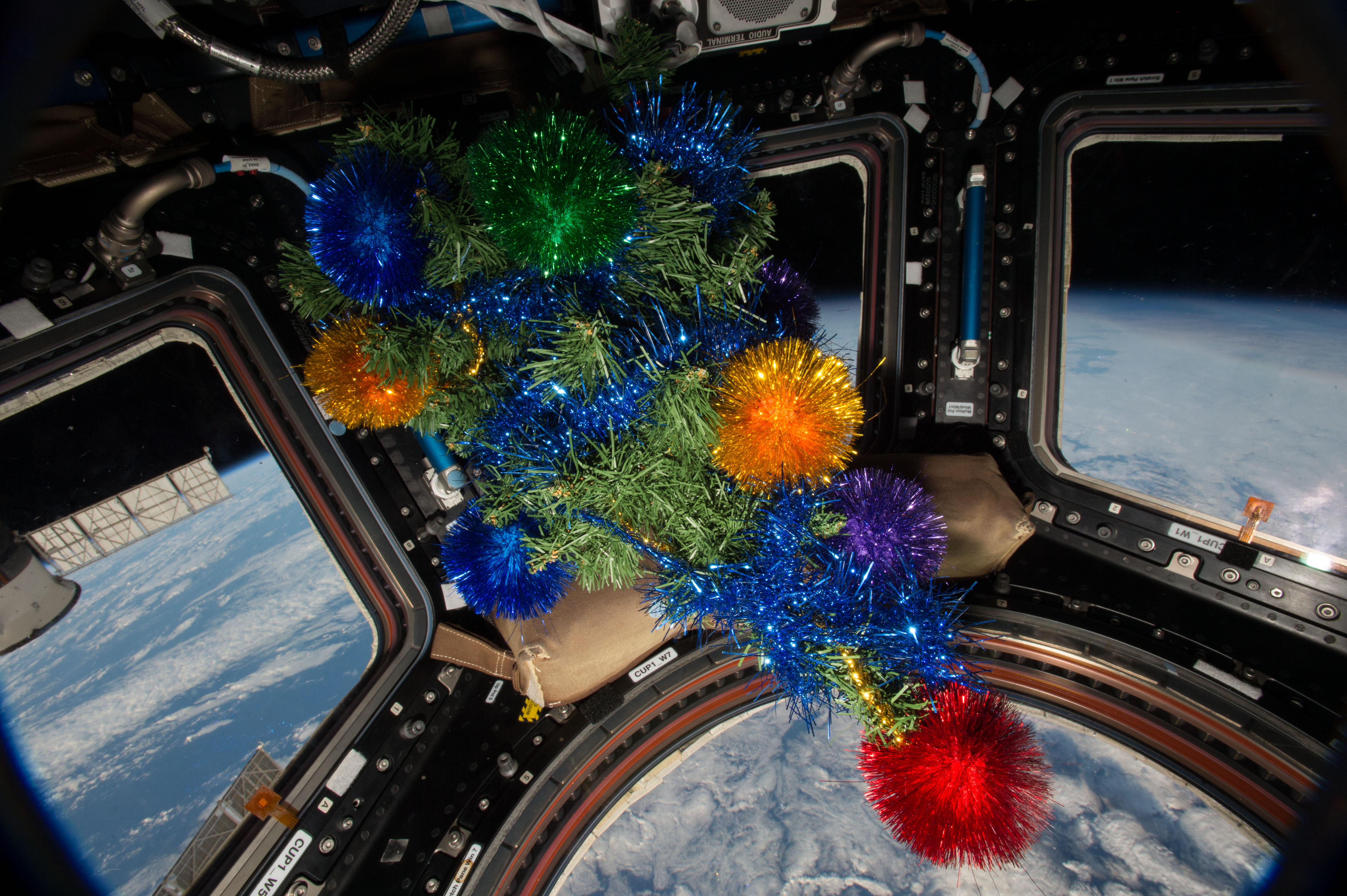 A christmas tree floating in the Cupola module of the International Space Station.jpg